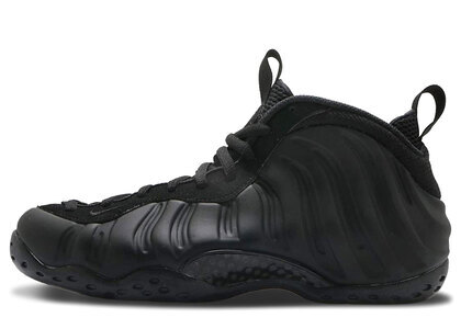 Nike Air Foamposite One Anthracite(2020)の写真