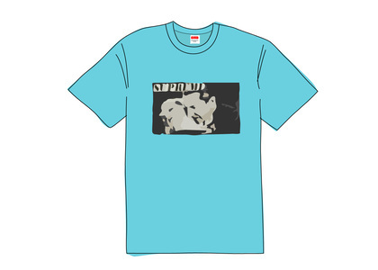 Supreme Bela Lugosi Tee Light Slateの写真