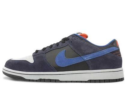 Nike Dunk SB Low Patagoniaの写真