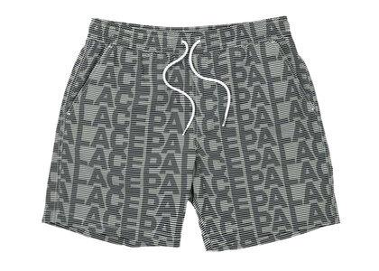 Palace Swim Shorts Grey (SS21)の写真