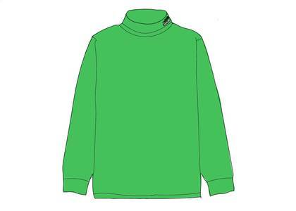 Supreme The North Face RTG Turtleneck Bright Greenの写真