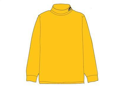 Supreme The North Face RTG Turtleneck Goldの写真