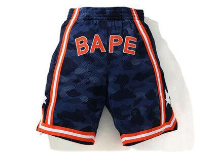 Bape Color Camo Wide Basketball Shorts Navy (SS21)の写真
