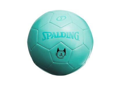 Tiffany&Co. Cat Street Soccer ball Tiffany Blueの写真