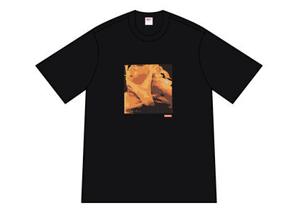 Supreme Butthole Surfers Rembrandt Pussyhorse Tee Black (SS21)の写真