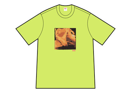 Supreme Butthole Surfers Rembrandt Pussyhorse Tee Yellow (SS21)の写真