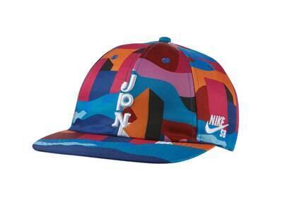 Nike SB × Parra Federation Kit Cap Japan Multiの写真