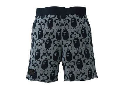 Coach × Bape Sweat Shorts Navy (SS21)の写真