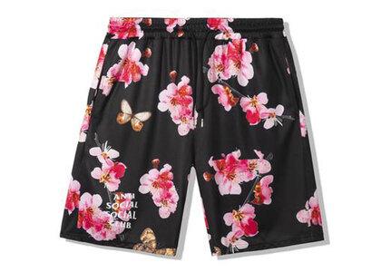 Anti Social Social Club Be My Butterfly Black Mesh Shorts Black (SS21)の写真