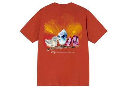 Stussy Higher State Tee Red (SS21)の写真