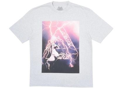 Palace Corn T-Shirt Grey Marl  (FW19)の写真