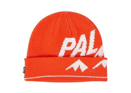 Palace Alpine Beanie Red  (FW19)の写真