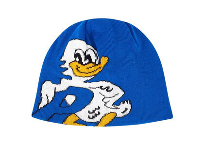 Palace Duck Out Beanie Blue  (FW19)の写真
