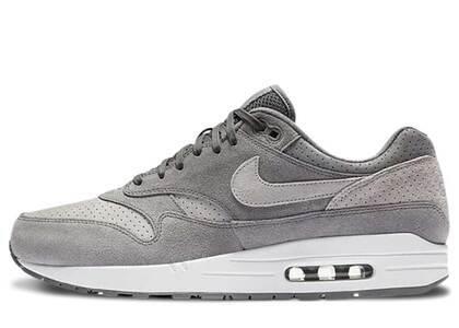 Nike Air Max 1 Cool Grey Wolf Greyの写真