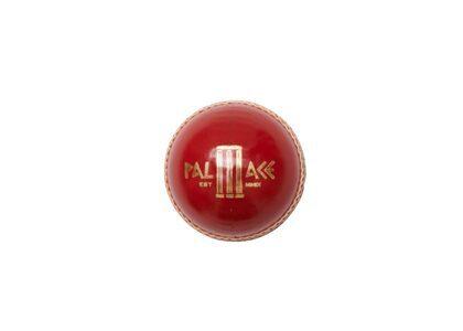 Palace Gray Nicolls Cricket Ball FW21の写真