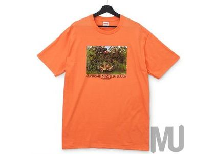 Supreme Masterpieces Tee Neon Orangeの写真