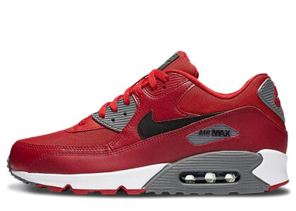 Nike Air Max 90 Gym Red Noble Redの写真