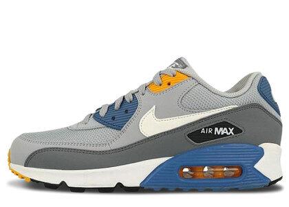 Nike Air Max 90 Wolf Grey Indigo Stormの写真