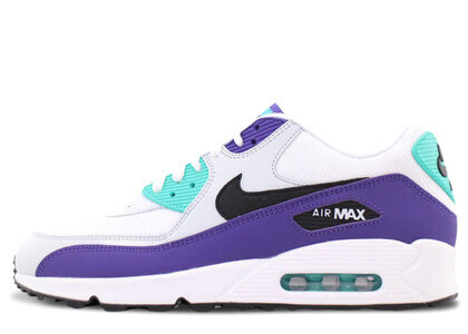 Nike Air Max 90 Grapeの写真
