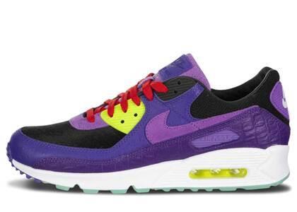 Nike Air Max 90 Violet Blendの写真