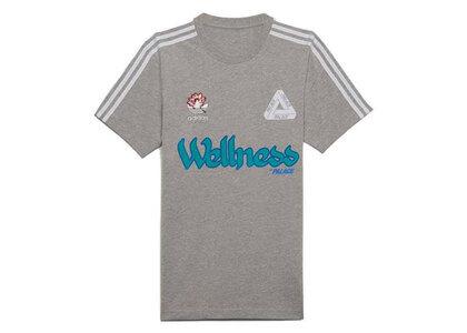 Palace × Adidas Graphic T-Shirt Gray (FW21)の写真