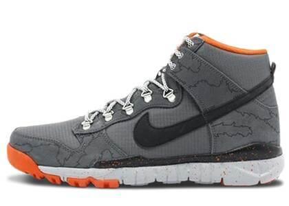 Nike SB Dunk High R/R Polerの写真