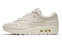 Air Max 1 Pinnacle Sailの写真