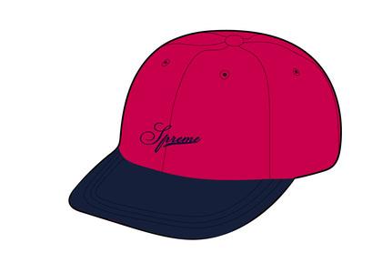 Supreme Velvet 2-Tone 6-Panel Pink (FW21)の写真