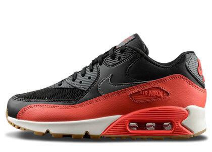 Nike Air Max 90 Crimson Bright Womensの写真
