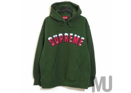 Supreme Icy Arc Hooded Sweatshirt Greenの写真