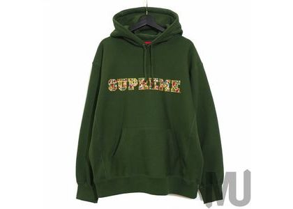 Supreme Jewels Hooded Sweatshirt (FW20) Greenの写真
