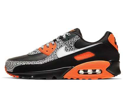 Nike Air Max 90 Safariの写真