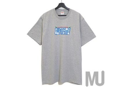 Supreme Ultra Fresh Tee Heather Greyの写真