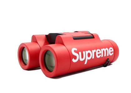 Supreme Leica Ultravid BR 8 x 20 Binocular Redの写真