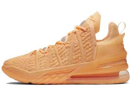 Nike LeBron 18 Melon Tintの写真