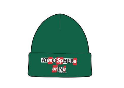 Supreme × ANTIHERO Beanie Dark Greenの写真