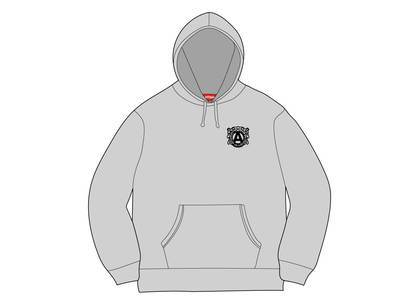 Supreme Anti Hooded Sweatshirt Ash Greyの写真