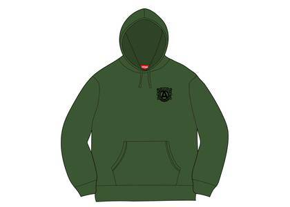 Supreme Anti Hooded Sweatshirt Greenの写真