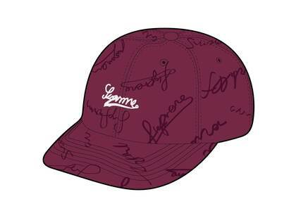 Supreme Script Logos 6-Panel Purpleの写真