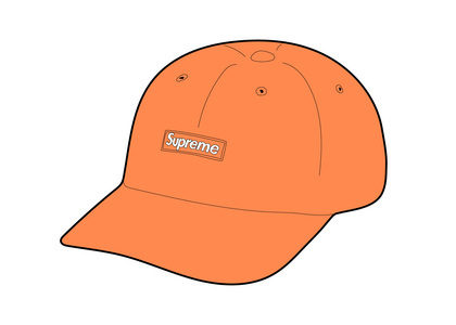 Supreme Cordura Small Box 6-Panel Peachの写真