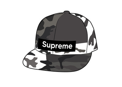 Supreme WINDSTOPPER Earflap Box Logo New Era Snow Camoの写真