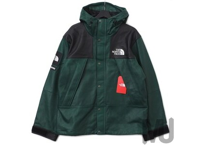 Supreme The North Face Leather Mountain Parka Dark Greenの写真