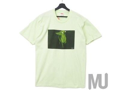 Supreme Chris Cunningham Chihuahua Tee Pale Mintの写真