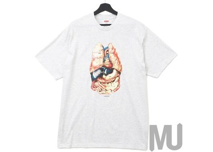 Supreme Guts Tee Ash Greyの写真