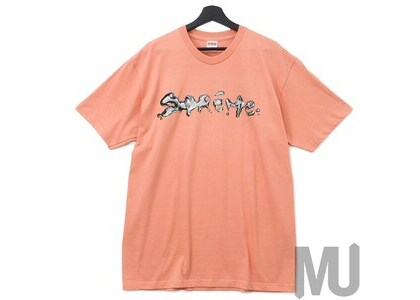 Supreme Liquid Tee Terra Cottaの写真