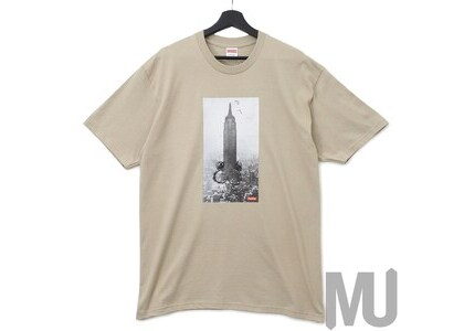 Supreme Mike Kelley The Empire State Building Tee Clayの写真