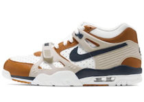 Nike Air Trainer 3 Medicine Ball (2019)の写真
