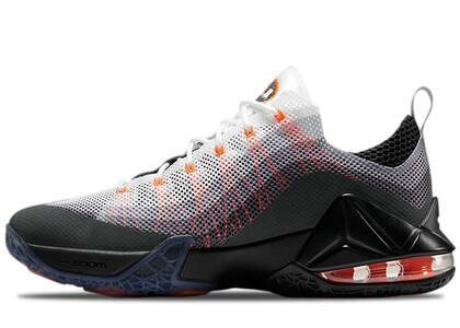 Nike Air Max 95 LeBron 12 Lowの写真