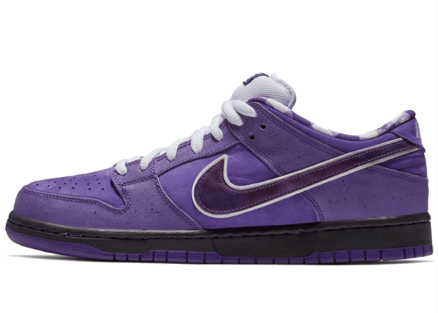 Concepts × Nike SB Dunk Low Purple Lobsterの写真