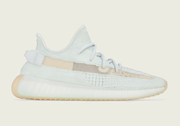 article sneaker picture